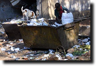 Woman picking garbage with a dog in Mumbai