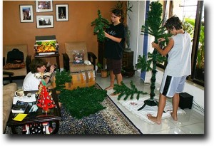 Putting the Christmas tree up for the last time in India!