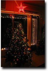 Here's the tree at night!