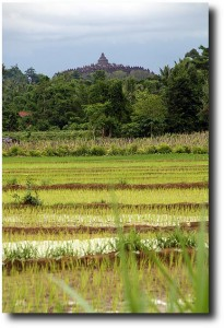 The temple is visible from all around the surrounding farmland
