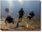 The Stutz family on an underwater adventure!
