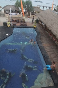"New divers learn in ""our"" swimming pool"