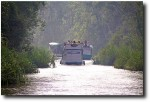 Once we started heading upriver to Camp Leakey, however, we ran into a virtual convoy of boats!