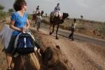 Camels away!