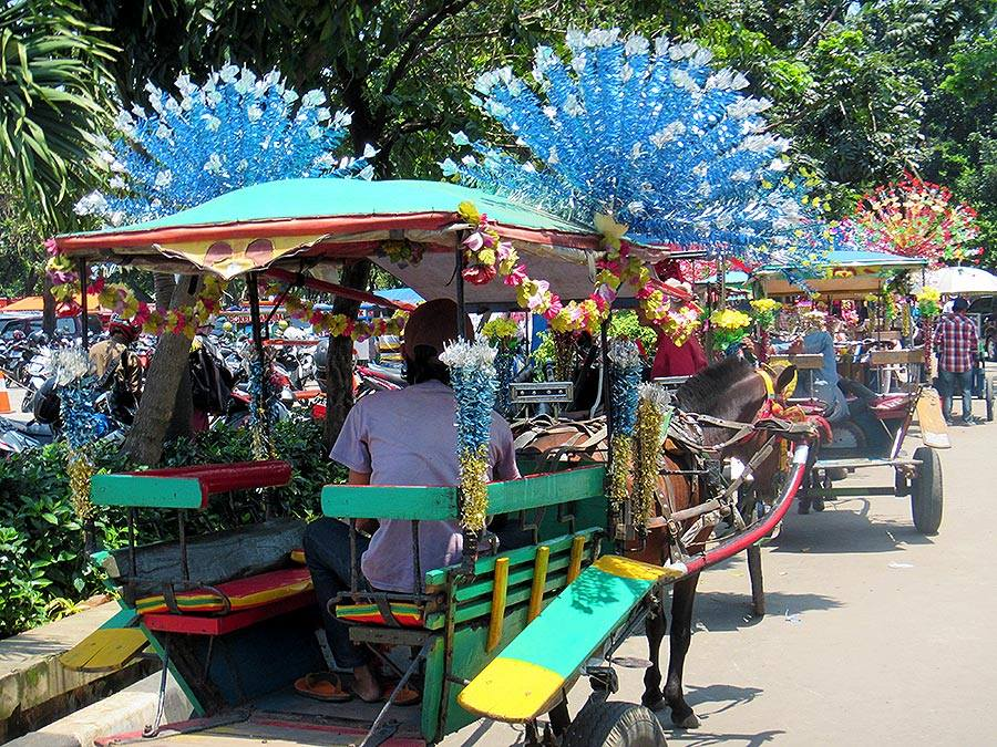 Vibrantly colored horse-drawn carriages wait to take people around the site.